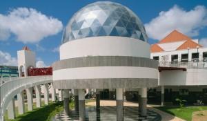 Dargão-do-Mar